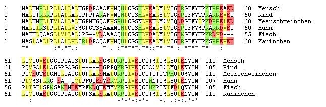durch vergleichende Analysen treffen, zum Beispiel über die Funktion eines Proteins oder welche Rolle ein Gen für eine Krankheit spielt.